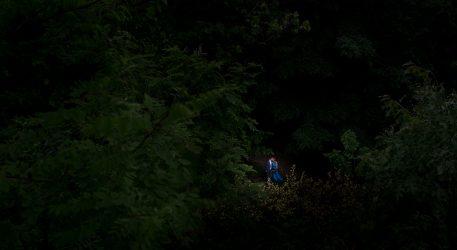 Bruidsreportage in het bos bij Arnhem